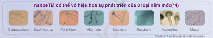 nanoe diệt đến 8 loại vi khuẩn